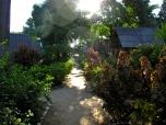 Sairee Cottages, Koh Tao