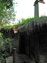 One house had a living roof...