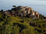 Coming down from the cliffs into Corniglia