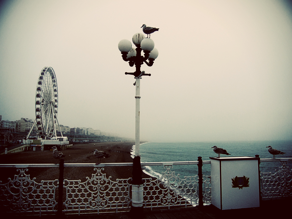 seagulls-and-ferris-wheel.jpg