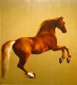 Emily's favorite: Whistlejacket by George Stubbs